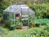 Découvrez tout ce qu'il faut savoir sur la serre de jardin en verre